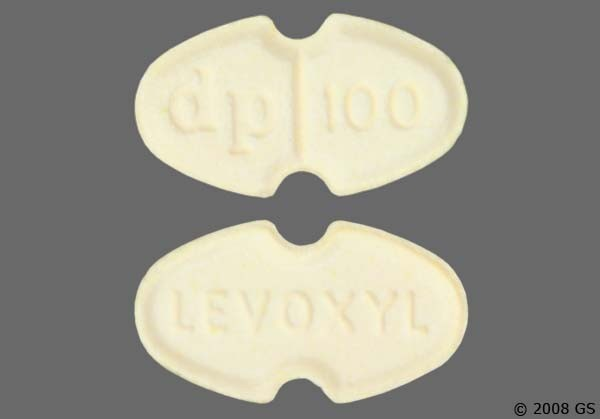 Photo of the drug Levoxyl.