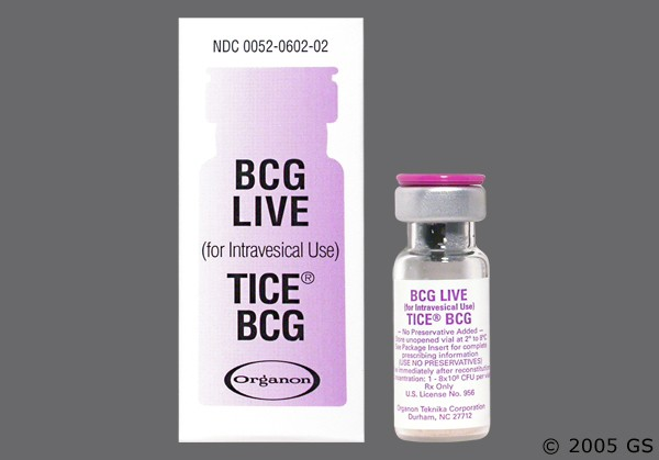 Photo of the drug Tice Bcg (generic name(s): ).